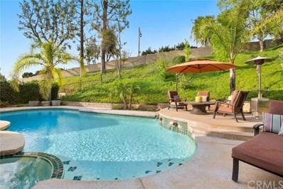980 S Hedin Circle, Anaheim Hills, CA 92807 - MLS#: PW17154231