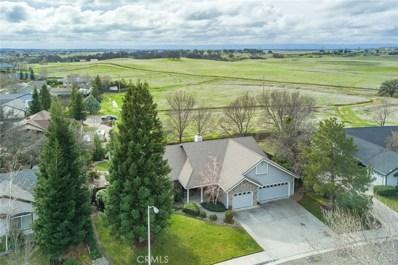 845 Terrace Drive, Red Bluff, CA 96080 - #: SN18023503