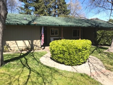 705 Lawn Drive, Chico, CA 95973 - MLS#: SN18074206