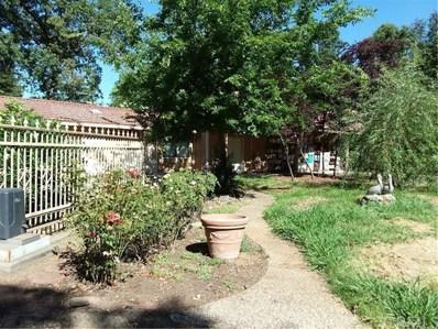 45 Kirk Way, Chico, CA 95928 - MLS#: SN18157815