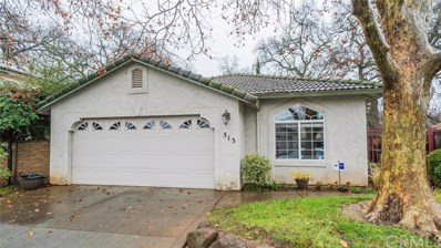 515 Mission Santa Fe Circle, Chico, CA 95926 - MLS#: SN19005338