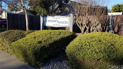 1412 N Cherry Street UNIT 3, Chico, CA 95926 - MLS#: SN19060103