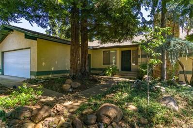 13 Tilden Lane, Chico, CA 95928 - #: SN19113620