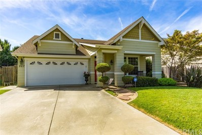 307 Southbury Lane, Chico, CA 95973 - MLS#: SN19148717