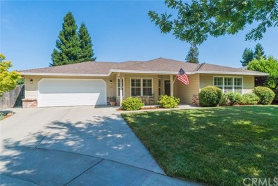 336 Crater Lake Drive, Chico, CA 95973 - MLS#: SN19160633
