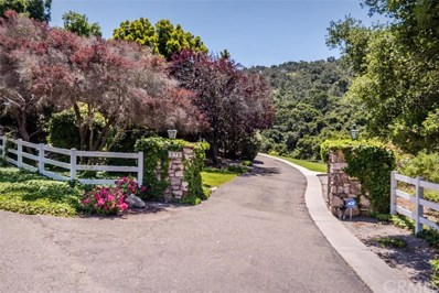 676 Newsom Springs Road, Arroyo Grande, CA 93420 - MLS#: SP17126634