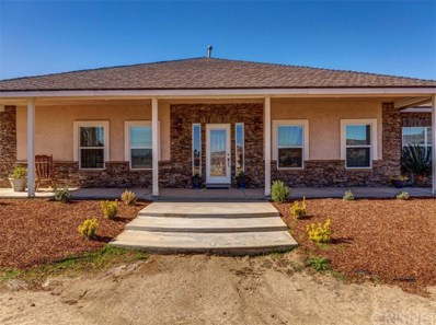 40313 98th Street W, Leona Valley, CA 93551 - MLS#: SR17256463