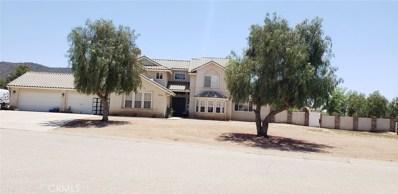 9810 Bald Mountain Court, Agua Dulce, CA 91390 - MLS#: SR18111437