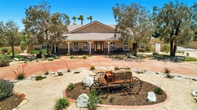 42114 Desert Sage Avenue, Lancaster, CA 93536 - MLS#: SR18138066