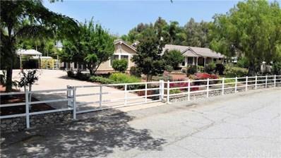 29320 Hasley Canyon Road, Castaic, CA 91384 - MLS#: SR18146278