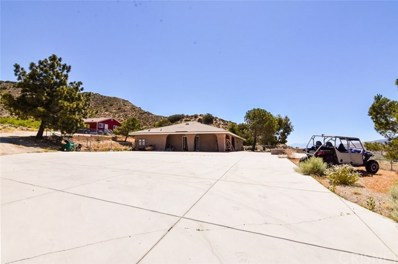 9133 Northside Drive, Leona Valley, CA 93551 - MLS#: SR18153022