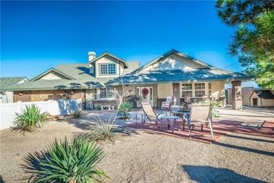 41050 13th Street W, Palmdale, CA 93551 - MLS#: SR19130774