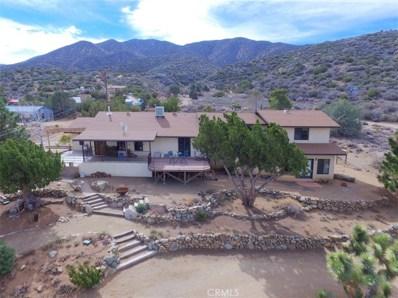 9950 Cima Mesa Road, Littlerock, CA 93543 - MLS#: SR19151362