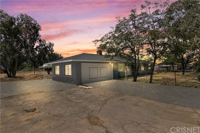 9234 E Avenue Q14, Littlerock, CA 93543 - MLS#: SR19160935