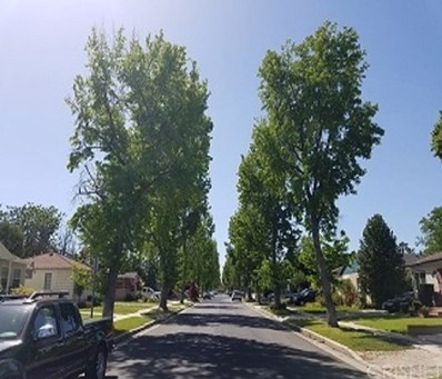 17337 Emelita, Encino, CA 91316 - MLS#: SR19200516