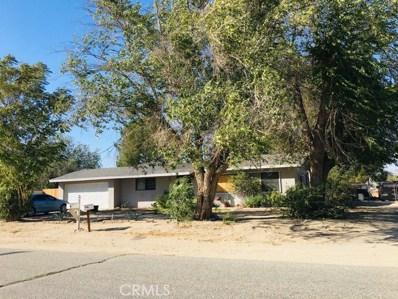 10729 E Avenue R6, Littlerock, CA 93543 - MLS#: SR19231420