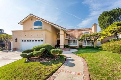 10339 Christine Place, Chatsworth, CA 91311 - MLS#: SR20009568