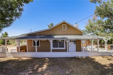 21123 Fort Tejon Road, Llano, CA 93544 - MLS#: SR20130102