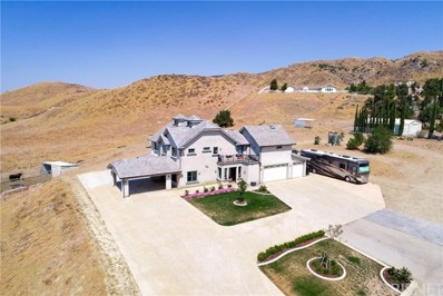 9889 Elizabeth Lake Road, Leona Valley, CA 93551 - MLS#: SR20168921