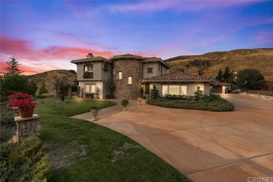 11043 Elizabeth Lake Road, Leona Valley, CA 93551 - MLS#: SR20195267