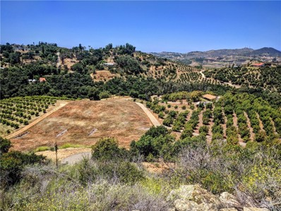 1313 Rice Canyon Road, Fallbrook, CA 92028 - MLS#: SW17112229