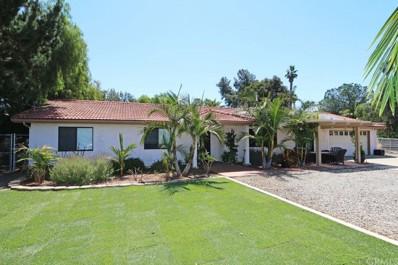1738 Green Canyon Road, Fallbrook, CA 92028 - MLS#: SW17140210