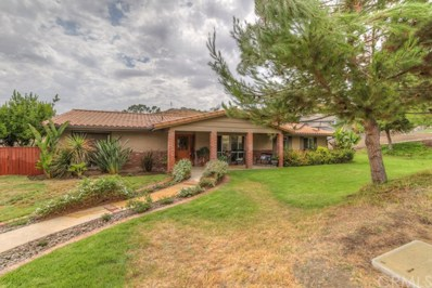 30660 Cinnamon Teal Drive, Canyon Lake, CA 92587 - MLS#: SW17168087