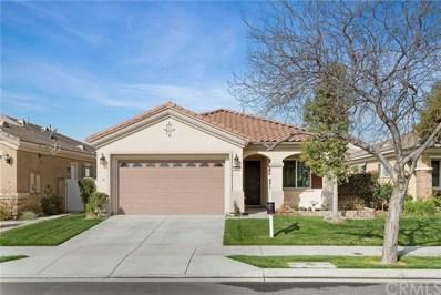 1667 Via Borrego, Hemet, CA 92545 - MLS#: SW17230109