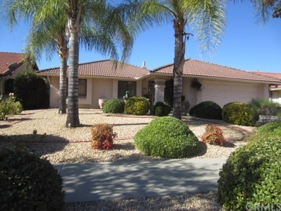 1347 Pepper Tree Drive, Hemet, CA 92545 - MLS#: SW17251823