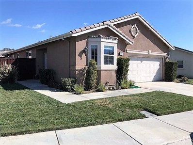 8786 Mann Lane, Hemet, CA 92545 - MLS#: SW18046789