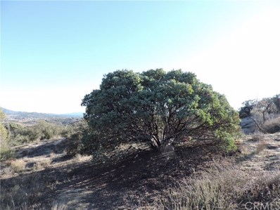 887 Forest Springs Road, Aguanga, CA 92536 - MLS#: SW18052028