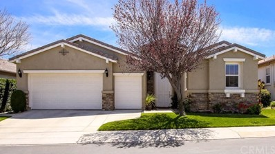 8371 Maruyama Drive, Hemet, CA 92545 - MLS#: SW18095225