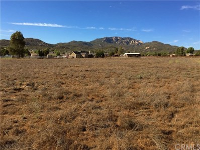 197 Forest Springs Road, Aguanga, CA 92536 - MLS#: SW18139637