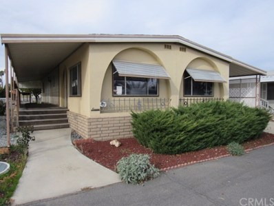 1525 W Oakland Avenue UNIT 63, Hemet, CA 92543 - MLS#: SW19009282