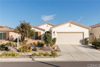 1362 Via Rivas, Hemet, CA 92545 - MLS#: SW19015797