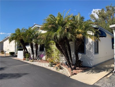 31130 S. General Kearny Road UNIT 62, Temecula, CA 92591 - MLS#: SW19029721