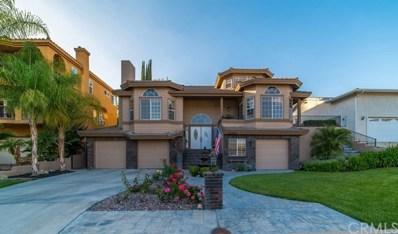 22680 Blue Teal Drive, Canyon Lake, CA 92587 - MLS#: SW19064157