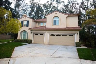 24027 Semillon Lane, Murrieta, CA 92562 - MLS#: SW19065094