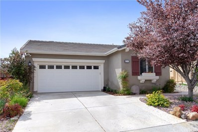8757 Stephenson Lane, Hemet, CA 92545 - MLS#: SW19066200