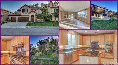 24099 Semillon Lane, Murrieta, CA 92562 - MLS#: SW19081836