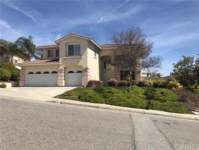 19 Corte Rivera, Lake Elsinore, CA 92532 - MLS#: SW19086176