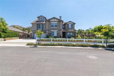 1449 Paso Fino Place, Norco, CA 92860 - MLS#: SW19171741