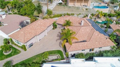 22928 San Joaquin Drive E, Canyon Lake, CA 92587 - MLS#: SW19194053