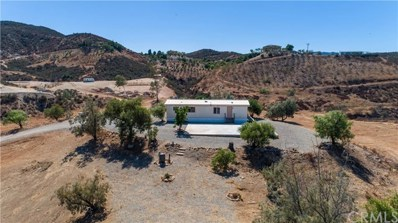 24675 Oak Circle Drive, Wildomar, CA 92595 - MLS#: SW19199938