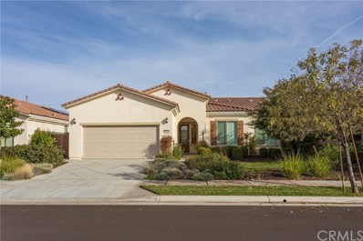 1616 Via Rojas, Hemet, CA 92545 - MLS#: SW19284498