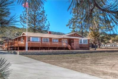 59533 Hop Patch Spring Road, Mountain Center, CA 92561 - MLS#: SW20028594