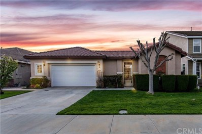29645 Baker Lane, Murrieta, CA 92563 - MLS#: SW20069986
