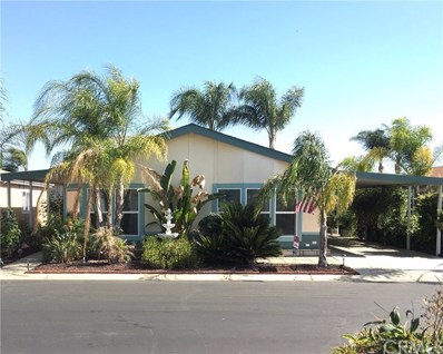1250 N Kirby Street UNIT 236, Hemet, CA 92545 - MLS#: SW20098837