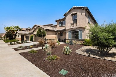 29270 First Green, Lake Elsinore, CA 92530 - #: SW20121252