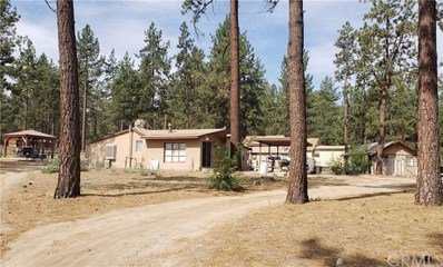 59485 State Highway 74, Mountain Center, CA 92561 - MLS#: SW20164618